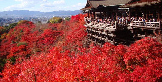 清水寺の秋の紅葉の写真
